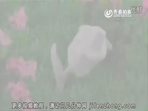 如何用餐巾纸折玫瑰花